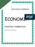 El objetivo de la economía positiva es explicar la forma en la que la sociedad toma sus decisiones de consumo