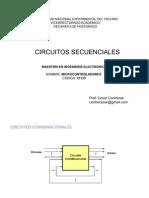 CircuitosSecuencialesPostgrado2008