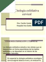 citologiaexfoliativacervical-110225174348-phpapp02