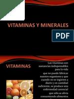 Vitaminas y Minerales Proteinas