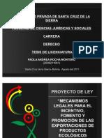 Presentacion de Tesis-paola Rocha