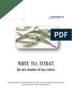 Wte Brochure - Eng II