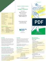 2011 ACE Golf Brochure