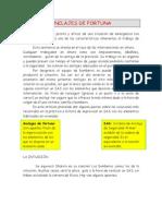 ANCLAJES DE FORTUNA