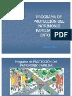 proteccinpatrimoniofamiliar-1232459926352096-2