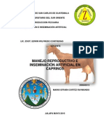 Manejo Reproductivo e Inseminacion Artifical en Caprinos
