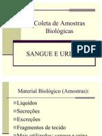 Bioquimica.do Sangue Seminario de Pratica - Coleta