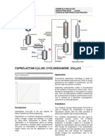 APN 4.03.06 Caprolactam Production Process