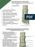5. Vasc., 6.Lymph.& 7. Inn. of the Foot 209-10