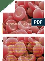 Metabolismo Del Eritrocito