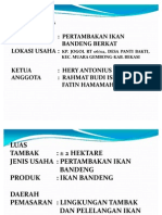 tambak_bandeng