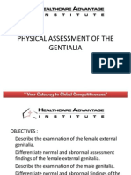 Physical Assessment of the Gentialia