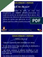 CLASE2.ciencias