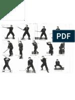 Bujinkan Kenjutsu Kamae (sword postures)