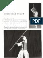 Bujinkan Bojutsu Kamae (stick postures)