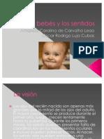 Los bebés y los sentidos