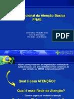 Aula - Politica Nacional Da Atencao Basica - Aline Leite[1]