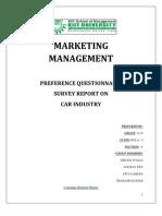 Mm Survey Report