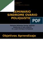 Seminario SOP - Paloma Farías