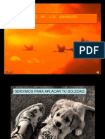 Pedido de Los Animales (a)