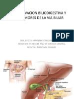 Tumores de La via Biliar y Derivacion Biliodigestiva2