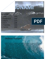 Tsunami Power Point (SuDrEAm)