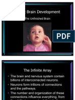 Infant Brain Development 1