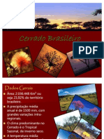 Cerrado_brasileiro
