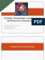 Fisiología, fisiopatología y tratamiento de los  Síndromes coronarios agudos