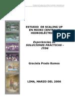 Prado Estudio de Scaling Up en Mchs
