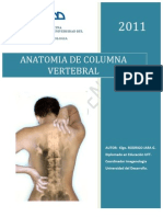 Apunte columna 2011