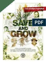 Save and Grow Flyer