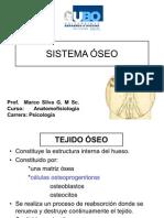 3 Sistema Oseo
