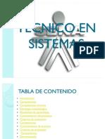 Tecnico en Sistemas (1)