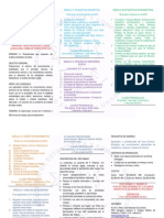 Programa Diplomado 2012