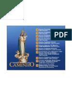 Festas da Nossa Senhora do Caminho, 2011. Parque Douro Internacional