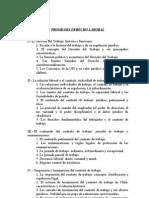 Programa Derecho Del Trabajo