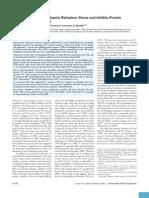Fluoride Induces Endoplasmic Reticulum Stress and Inhibits Protein