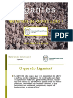 MCI - Ligantes_2010_PP