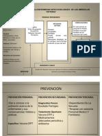Historia Natural de La Enfermedad Difteria(2)