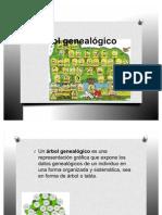 Árbol genealógicoo