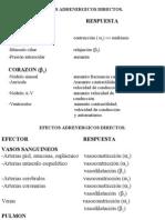 Adrenergicos y Antiadrenergicos