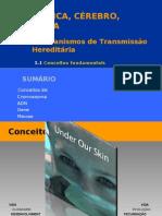 AULAS DE 29 DE SETEMBRO E DE 2 OUTUBRO