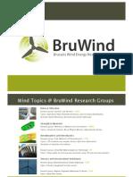 bruwind-110409043815-phpapp01