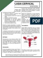 03 Displasia Cervical