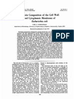 Protein Composition of the Cell Wall and Cytoplasmic Membrane of Escherichia Coli