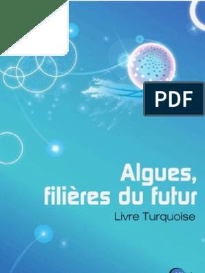 Livre Turquoise V Screen Développement Durable