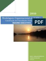 Modelagem_Organizacional ICMBio