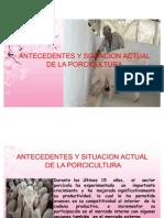 1. ANTECEDENTES, SITUACION ACTUAL Y GENERALIDADES DE LA PORCICULTURA