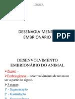 DESENVOLVIMENTO+EMBRIONÁRIO_pt